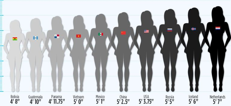 whats the normal weight for a 5 3 female