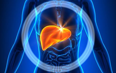 6 Things You Need to Know About Your Liver That Have Nothing to Do with Alcohol
