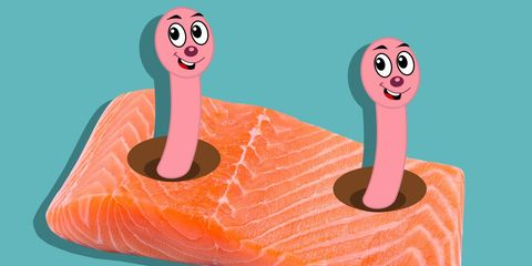 Uh-Oh—Your Salmon Might Be Filled With Tapeworms