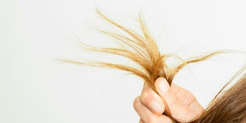 fine hair problems oily roots dry ends