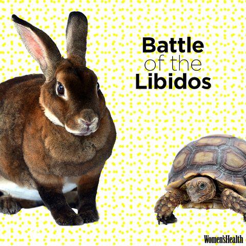 battle of libidos