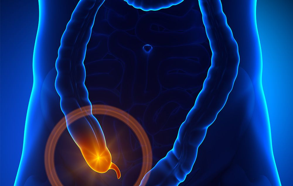 9 Things You Need To Know About Your Appendix Womens Health