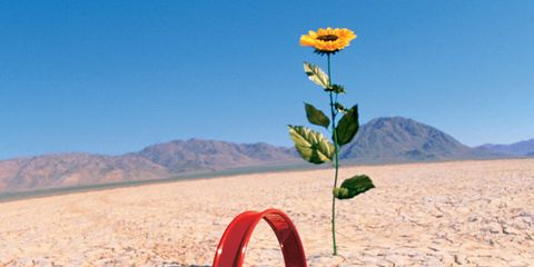 Better Female Orgasms: Watering Can in the Desert