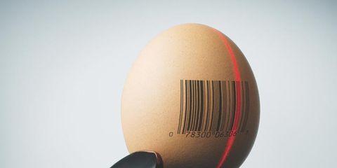 1101-egg-donation.jpg