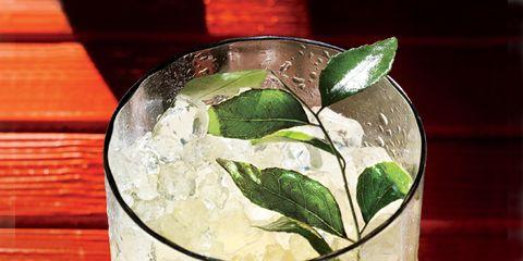1305-curry-leaf-mojito.jpg