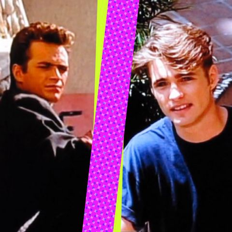Brandon and/or Dylan from Beverly Hills, 90210