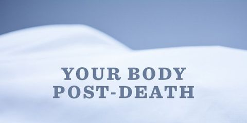 body-post-death.jpg