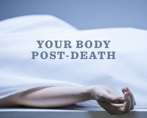 8 Fascinating (but Quite Creepy) Things That Happen to Your Body When You Die