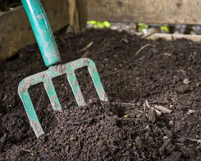 Would You Ever Consider Turning Your Dead Body into Compost?