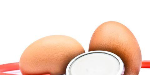 egg-donation-art.jpg
