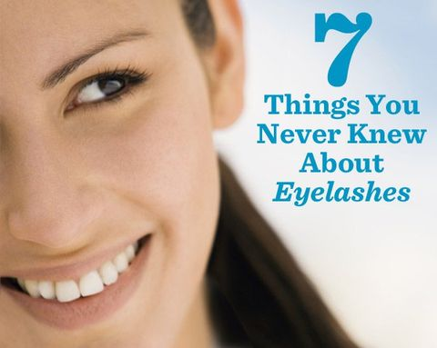 7 Things You Never Knew About Eyelashes