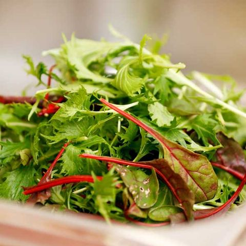 5 Healthy, Tasty Greens to Mix Up Your Salads