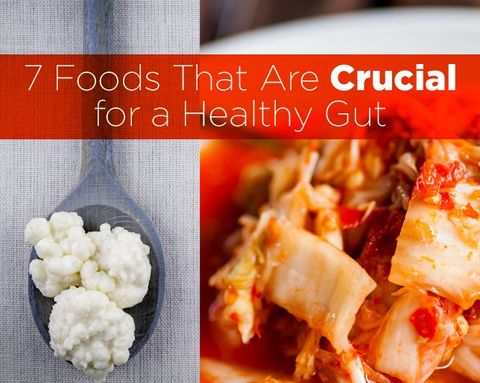 7 Foods That Are Crucial for a Healthy Gut