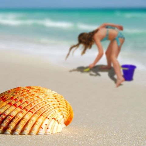 Be a beach comber