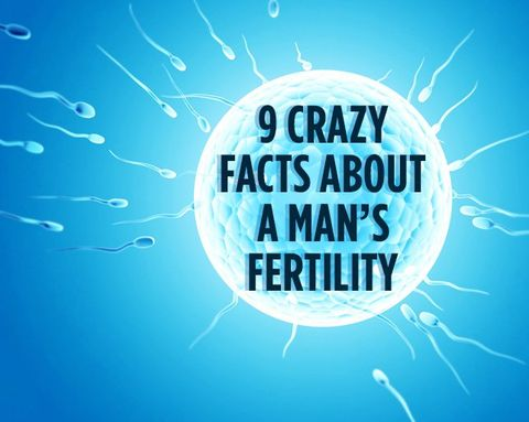 9 Crazy Facts About a Man's Fertility