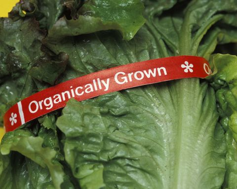 Pesticide Residue Found On Nearly Half Of Organic Produce