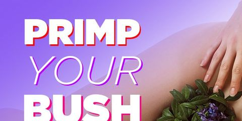 primp-your-bush.jpg