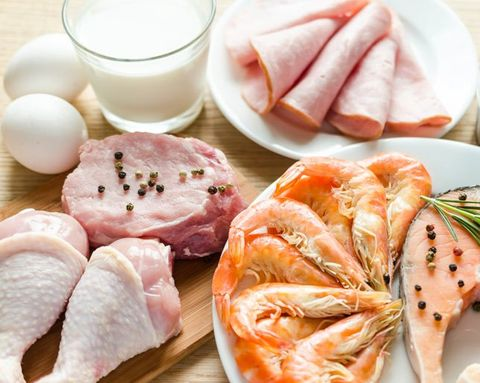 Can Eating a High-Protein Diet Increase Your Metabolism?