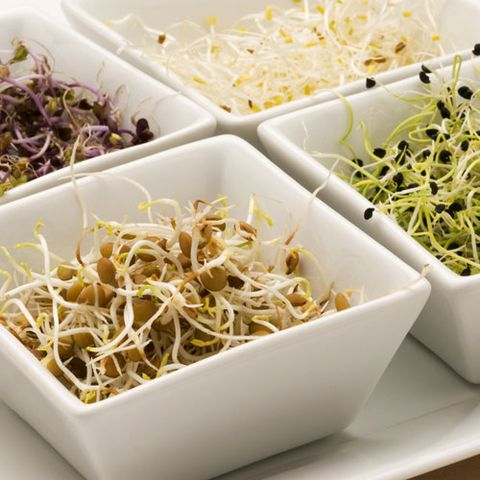 Alfalfa, Radish, and Other Raw Sprouts
