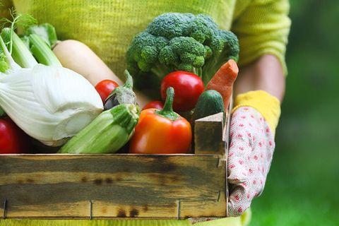 Vegan nutrition, Whole food, Bell pepper, Local food, Natural foods, Vegetable, Ingredient, Produce, Leaf vegetable, Food,