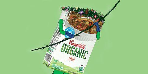 organic supermarket foods