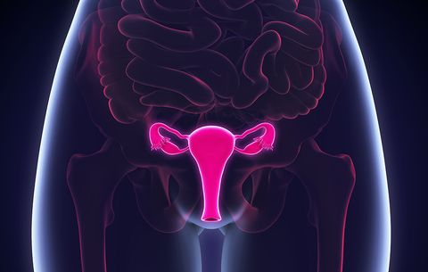 Vaginal Cancer: Everything You Need to Know   Women's Health