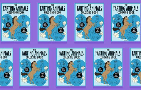 Farting Animals Coloring Book White Elephant Gift Idea