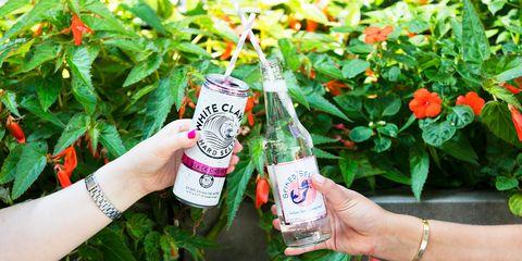 Drink, Hand, Liqueur, Finger, Plant, Nail, Bottle, Distilled beverage, Herb,