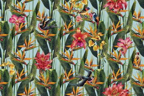 Inkiostro Bianco Sterlizia wallpaper