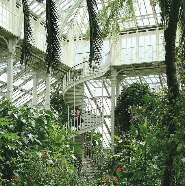 kew gardens, royal botanic gardens london
