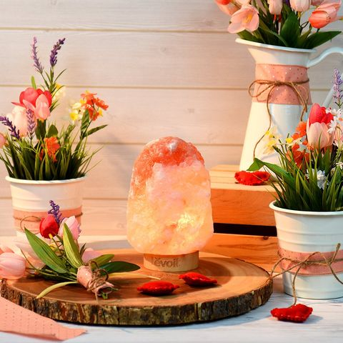 Pink, Flowerpot, Flower, Flower Arranging, Floral design, Houseplant, Centrepiece, Plant, Artificial flower, Floristry,