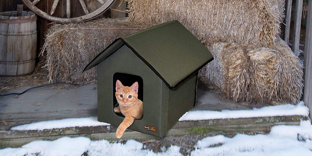 Amazon Heated Pet House Keeps Outdoor Cats Warm During Winter