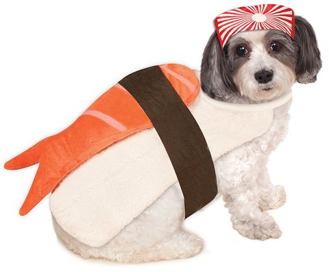 e630742190c4 20+ Cute Dog Halloween Costumes - Food-Theme Costume Ideas for Dogs