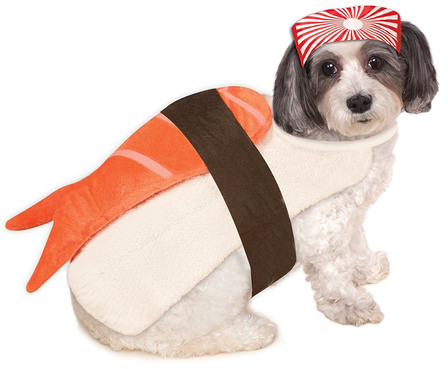 image  sc 1 st  Delish.com & 20+ Cute Dog Halloween Costumes - Food Inspired Costume Ideas for ...