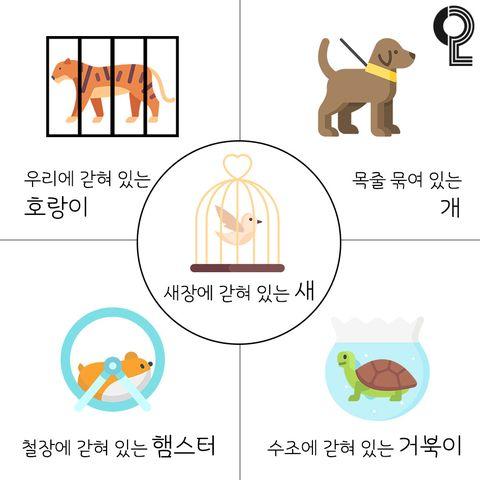 韓國超準心理測驗!一張圖看出你厭世原因、壓力來源
