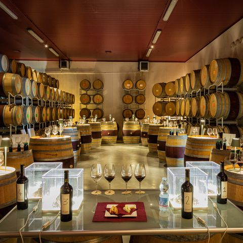Winery, Wine cellar, Room, Interior design, Distilled beverage, Building, Barrel,