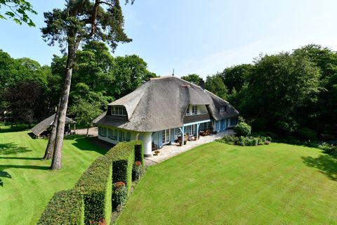 Property, Thatching, House, Cottage, Grass, Building, Botany, Home, Estate, Tree,