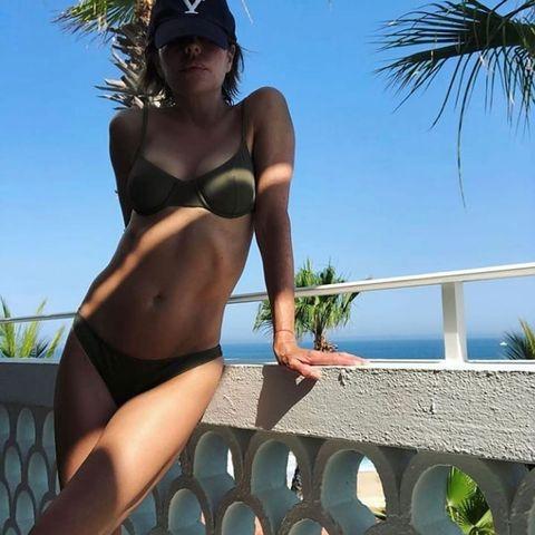lisa rinna abs bikini instagram