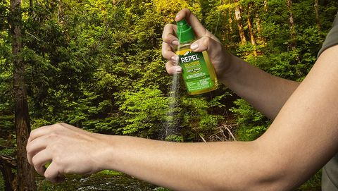 This Deet Free Eucalyptus Bug Repellent Is Ankle Saving
