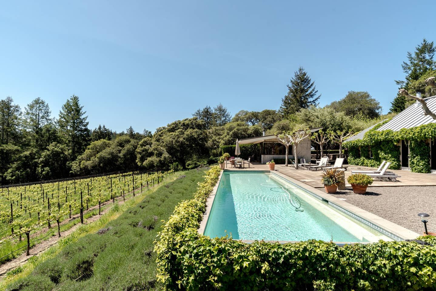 A Wine Lover's Guide to the Best Airbnbs in California