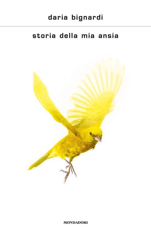 Bird, Yellow, Wing, Parrot, Beak, Adaptation, Songbird, Perching bird, Tail, Atlantic canary,