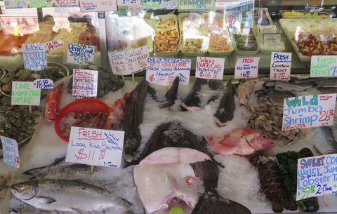 Fish You Should Never Eat