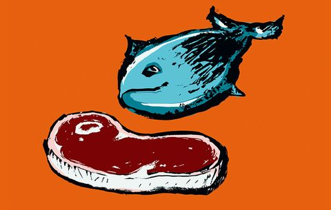 What kind of diet is best for the planet? To be an ethical omnivore, or a vegetarian?