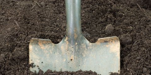 Our Top 10 Tools For Working The Soil