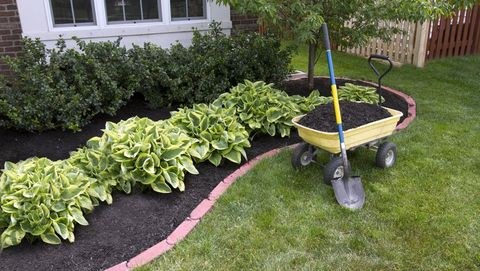 How To Mulch Your Garden 6 Kinds Of And When Use Them