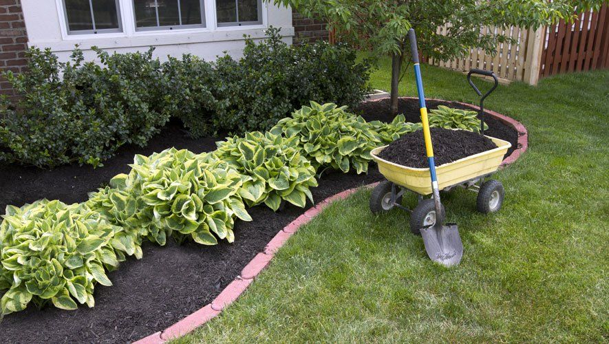 Superbe How To Mulch Your Garden And Stop Weeds In Their Tracks