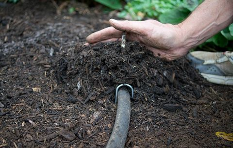 How to use soaker hoses to install a drip irrigation system in your use mulch to conserve water solutioingenieria Gallery