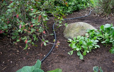 How to use soaker hoses to install a drip irrigation system in your place soaker hoses a few inches from plant stems solutioingenieria Gallery