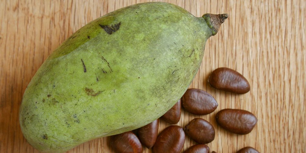 Everything You Need To Know About Preparing And Eating Pawpaws