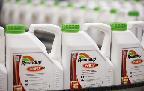 How Much Toxic Roundup Are You Eating?   Rodale's Organic Life